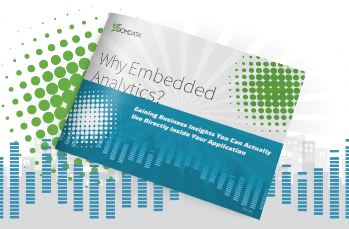 Why Embedded Analytics eBook