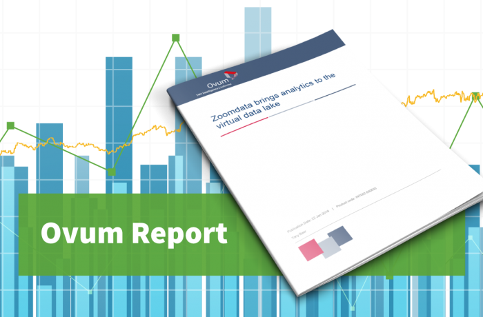 ovum report virtual data lakes
