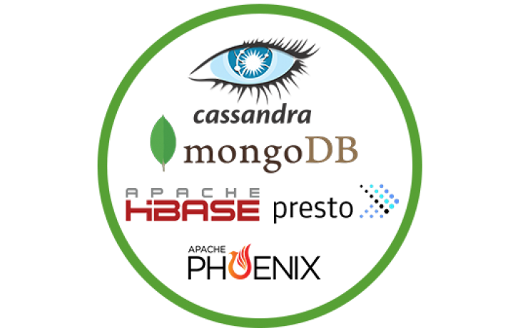 NoSQL Database Analytics