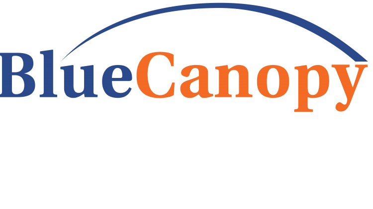 Blue Canopy Group Logo